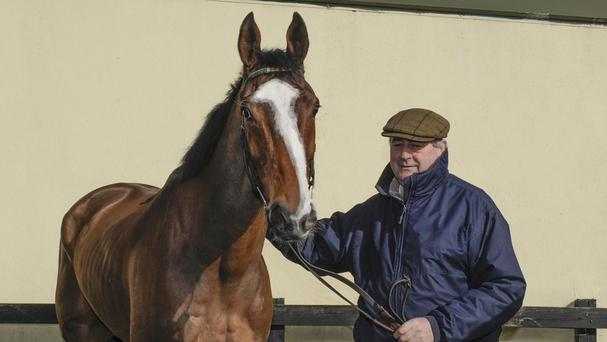 Apache Stronghold with trainer Noel Meade