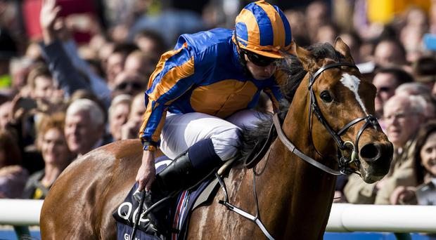 Gleneagles and Ryan Moore land the 2000 Guineas