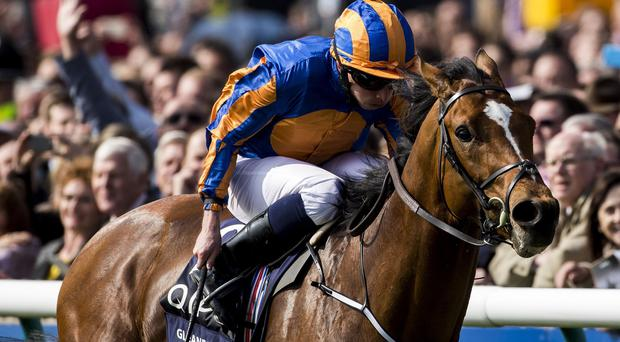 Gleneagles wins the 2000 Guineas