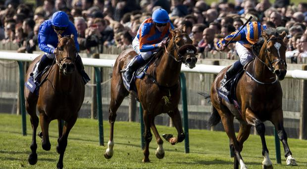 Territories (left) runs on well to finish second