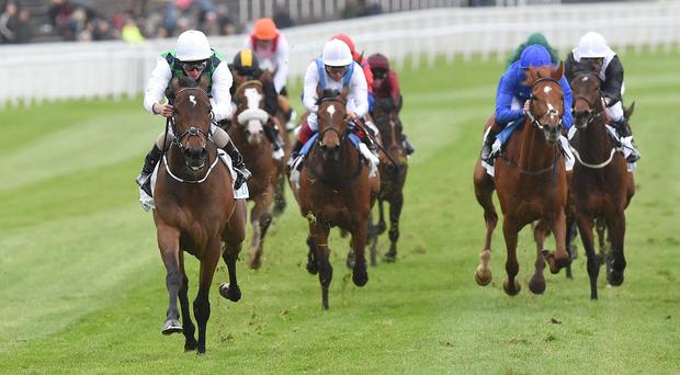 Diamondsandrubies is in a different league to her Cheshire Oaks opponents