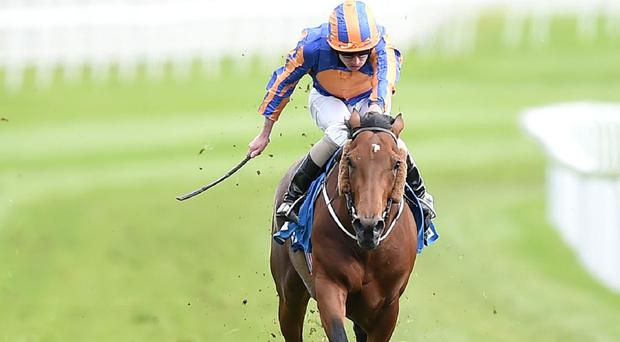 Hans Holbein wins the Chester Vase