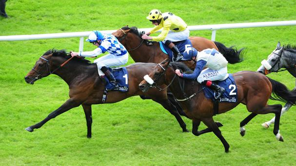 Al Kazeem just holds off Fascinating Rock (near)