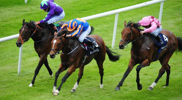 Gleneagles wins the Irish 2,000 Guineas