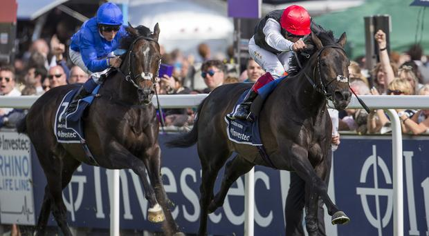 Jack Hobbs runs a fine race to be second in the Derby
