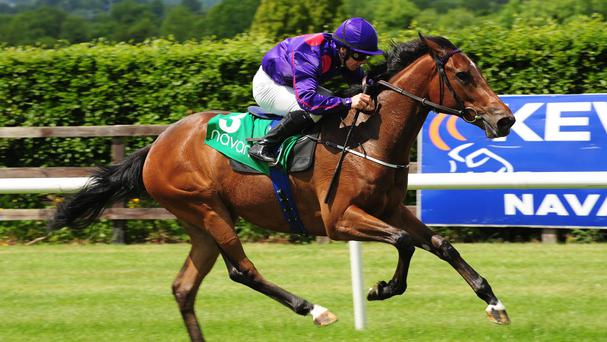 Miss Elizabeth stays unbeaten at Navan