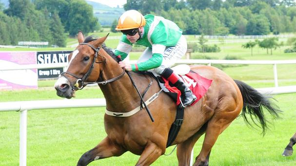 Laviniad winning at Gowran Park