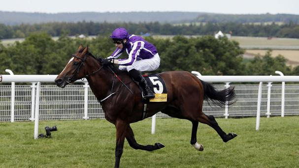 Highland Reel is one of four Aidan O'Brien runners in the Irish Derby