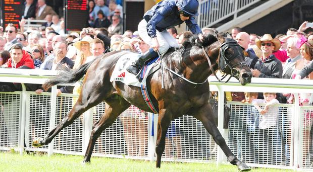 Painted Cliffs wins the Railway Stakes