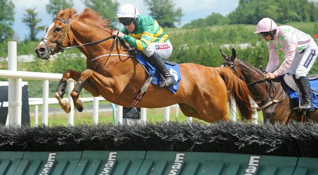 Barry Geraghty is back in the saddle on Waver