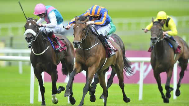 Wedding Vow (blue and orange silks) wins the Kilboy Estate Stakes at the Curragh