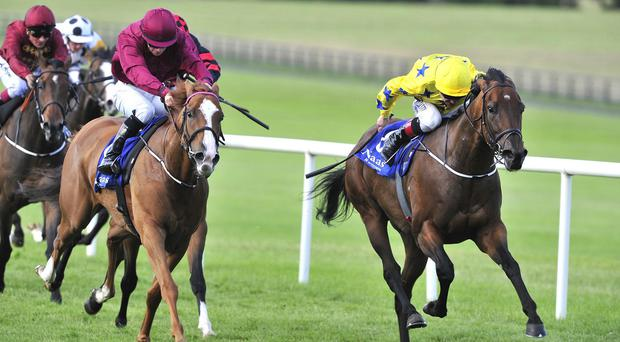 Letters Of Note isn't for catching at Naas
