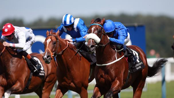 Portage (noseband) swoops for Ascot glory