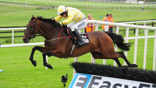 Beckwith Star winning at last year's Galway Festival