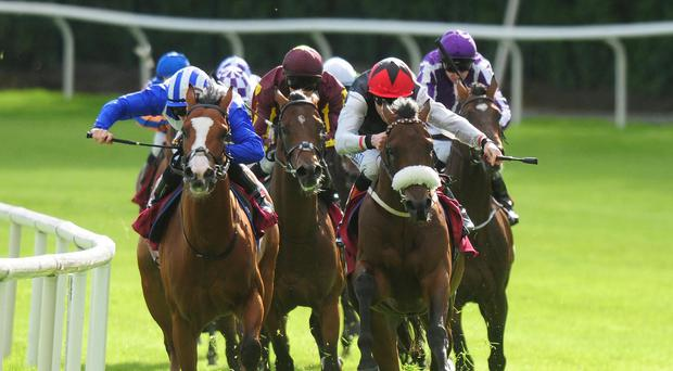 True Solitaire on his way to victory at Galway