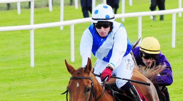 Empresario makes all to win at Galway