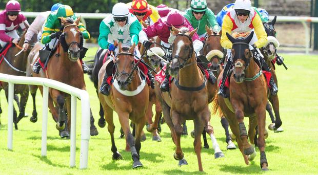 Powersbomb (right) wins at Galway