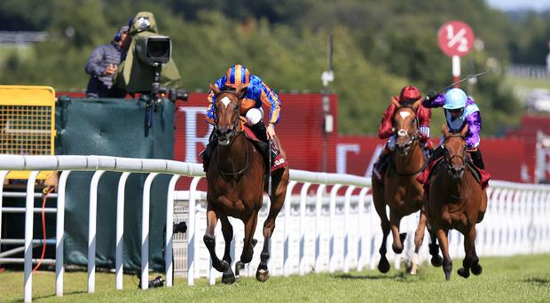 Legatissimo is a class apart from her Nassau rivals