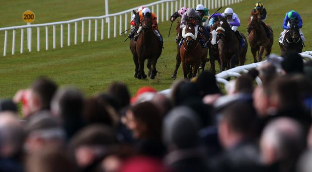 Walzertakt is unlikely to be heading to the Curragh
