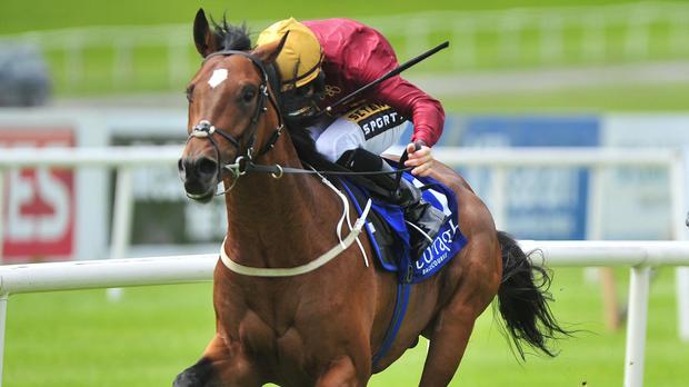 Restive on his way to winning at the Curragh