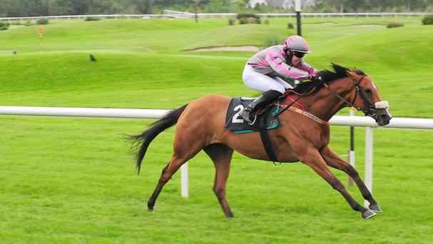 Maudlin Magdalen on her way to winning the Kingdom Gold Cup at Killarney
