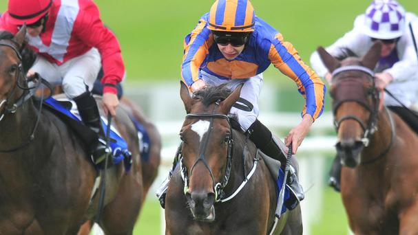 Ballydoyle on her way to an impressive victory at the Curragh