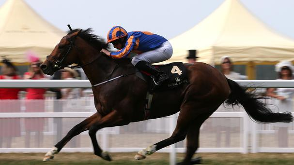 Along with French supertsar Solow, Gleneagles heads a list of 12 five-day confirmations for the Queen Elizabeth II Stakes