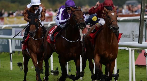 Bondi Beach ridden by Colm O'Donogue (centre) wins the Ladbrokes St Ledger Stakes beating Simple Verse ridden by Andrea Atzeni (right) following an enquiry at Doncaster