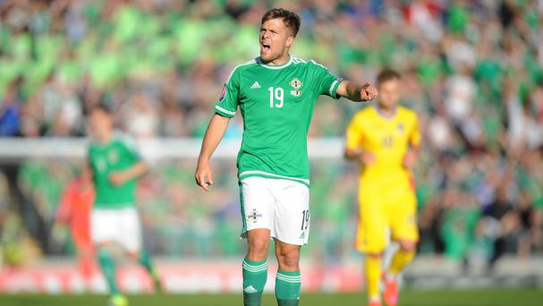Jamie Ward, pictured, has established himself under Northern Ireland boss Michael O'Neill