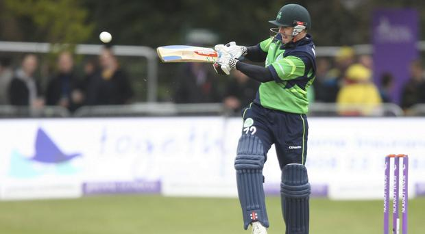 Niall O'Brien scored a half-century for Ireland but was unable to stave off defeat