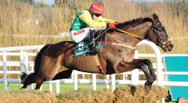 Sizing John looked a natural over the larger obstacles in the two-mile beginners chase