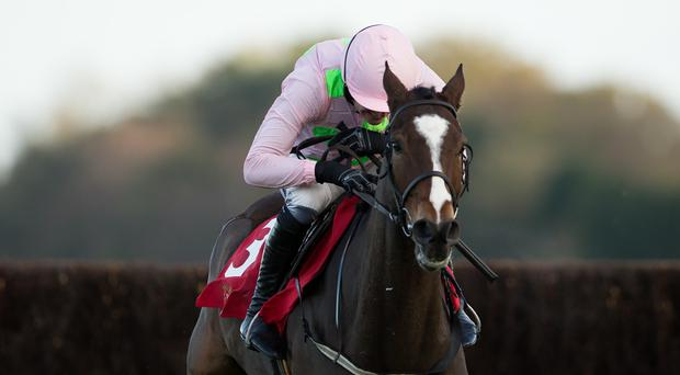 Vautour returns with a victory at Ascot