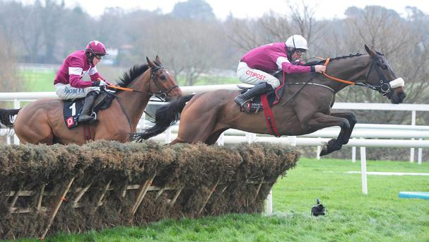 Prince Of Scars leads at the last in the Christmas Hurdle