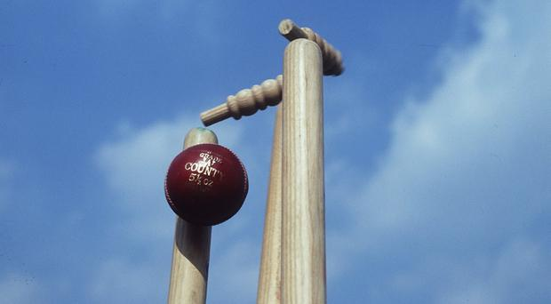 Ireland will take Australia's place at the ICC Under-19 Cricket World Cup
