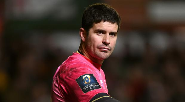 Morney Steyn kicked 12 points for the French side