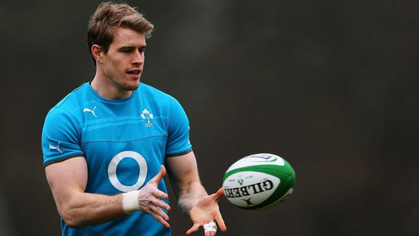 Andrew Trimble, pictured, says team-mate Johnny Sexton will rise above Eddie Jones' remarks