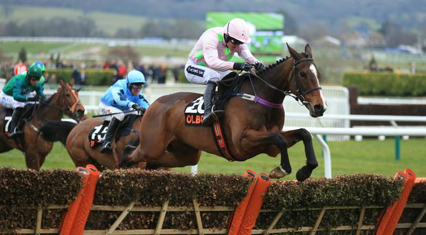 Vroum Vroum Mag is different class to her Mares' Hurdle opponents