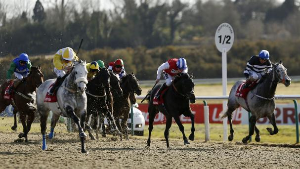 Captain Joy ridden by Pat Smullen (left, yellow and white cap) wins the Ladbrokes All-Weather Mile Championships Conditions Stakes at Lingfield