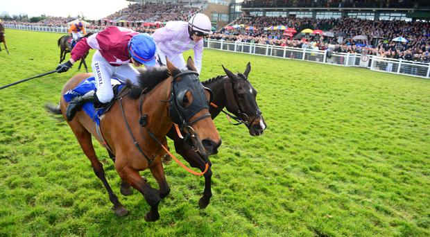 Rogue Angel (left) just hangs on in the Irish National