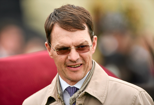 Aidan O'Brien's Zoffany colt won the Windsor Castle Stakes at Royal Ascot last year, before finishing up with a fine turn to be second to the clear 2,000 Guineas market leader Air Force Blue in the Phoenix Stakes at the Curragh. Photo: Sportsfile