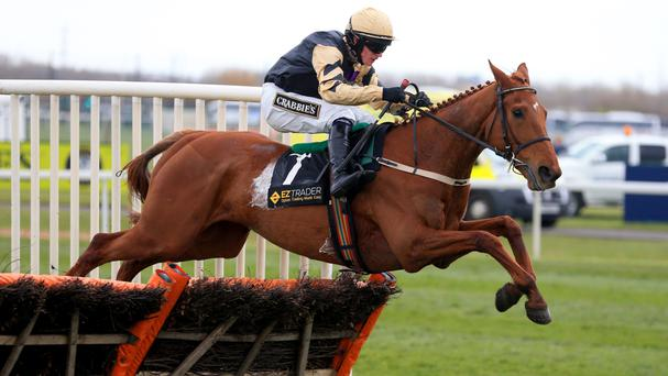 Yorkhill overcomes adversity to win at Aintree