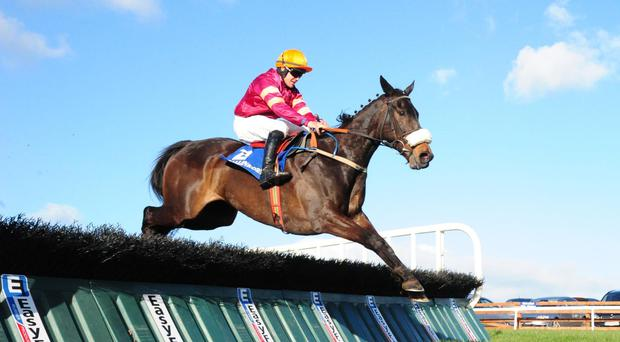 Robbie Colgan won on Bringerofthedawn but was banned for another ride at Ballinrobe
