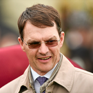 Aidan O'Brien's Highland Reel will aim to capture a second big prize in Hong Kong on Sunday when he appears in the Audemars Piguet QEII Cup. Photo: Sportsfile