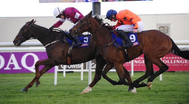 Blow By Blow keeps Moon Racer at bay