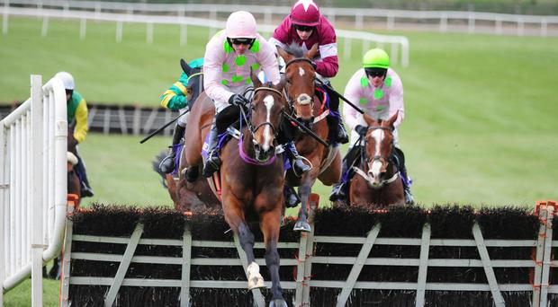 Vroum Vroum Mag shows her brilliance in the Punchestown Champion Hurdle