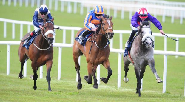 Found (centre) wins the Mooresbridge Stakes