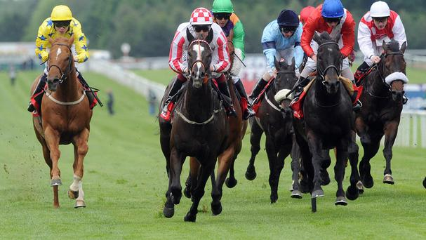 Sole Power winning the 2011 Temple