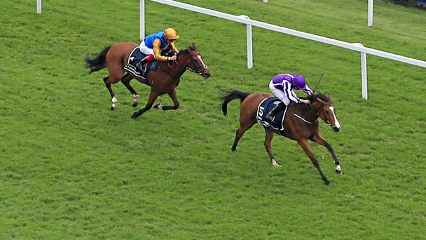 Minding is brilliant in the Oaks