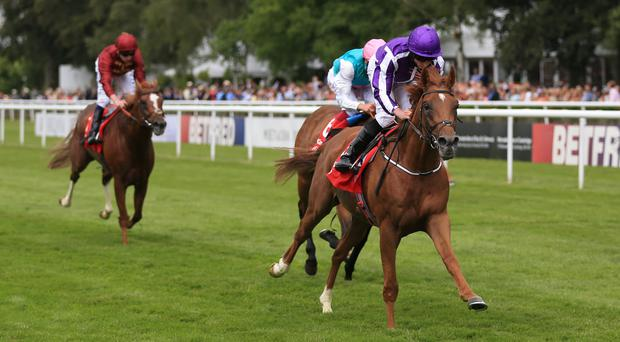 Housesofparliament (right) ridden by Ryan Moore wins the Bahrain Trophy at Newmarket