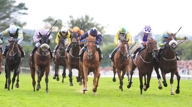 Golden Spear is back with a bang at Galway